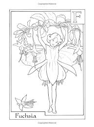 Read reviews from world's largest community for readers. Amazon Com Flower Fairies Alphabet Coloring Book 9780723264965 Cicely Mary Barker Books Fairy Coloring Pages Fairy Coloring Fairy Coloring Book