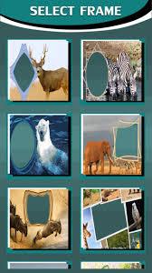 wildlife frames for photos next