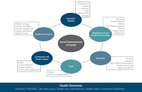 Social Determinants Of Health Issue Brief