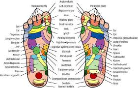 Acupuncture Foot Chart Acu Ball Massaging Needle Balls
