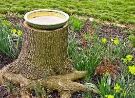 Bird Bath. tree stump garden ideas ...
