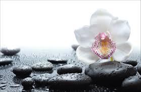 Bloemen Behang Online Kopen Fotobehang