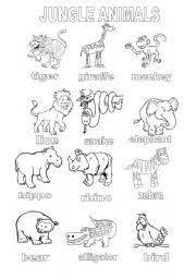 Small Picture Ilustracin vectorial de dibujos animados animales salvajes para