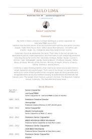Senior Copywriter Resume samples
