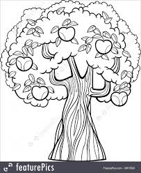 plants black and white cartoon ilration of apple tree with apples for coloring book