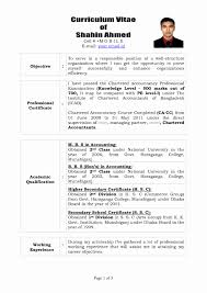 Resume format for Experienced Accountant Pdf Elegant 28 Curriculum Vitae  Professional It Resume format for Freshers