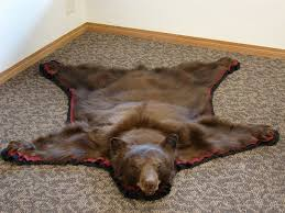 how to hang a bear rug designs
