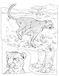 Small Picture Coloring Pages Wildlife Research Conservation