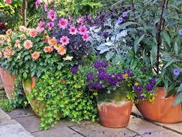 Small Picture 35 Patio Potted Plant and Flower Ideas Creative and Lovely Photos