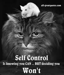 Self Control Is Knowing You CAN BUT Deciding You Won't Stunning Self Control Quotes