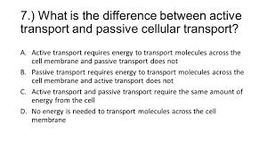 Active Vs Passive Transport Venn Diagram Passive Transport Vs Active Transport Venn Diagram Under