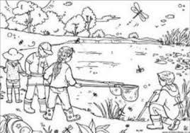 Kleurplaat Het Lelijke Jonge Eendje 146 Best Sprookje Het Lelijke