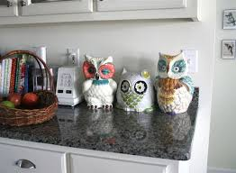 Owl Kitchen Decor   Google Search | My Kitchen | Pinterest | Owl Kitchen  Decor, Owl Kitchen And Kitchen Decor