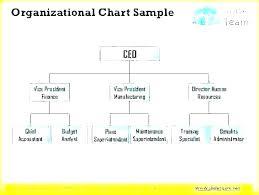 Sample Non Profit Organizational Chart Jasonkellyphoto Co
