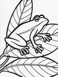 Small Picture Pics Photos Printable Coloring Page Princess Frog Cartoons