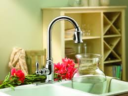 Danze Melrose Kitchen Faucet Danze Kitchen Faucet Danze Opulence Faucets And Accessories