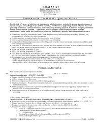 ... Sample Access Management Resume 3 ...