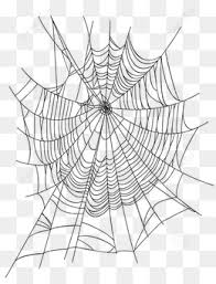 web drawing list of synonyms and antonyms of the word spider web