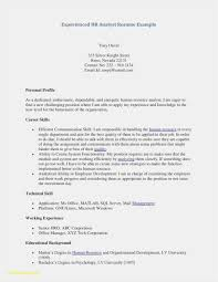 How To Make The Best Resume Inspirational Professional Skills Resume