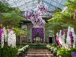 kennett square pa longwood gardens is anything but dreary this winter the heated 4 acre conservatory transports guests into a warm oasis featuring