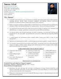 Internal Auditor Resume Objective Best of Retail Auditor It Auditor Resume Internal Auditor Resume Objective