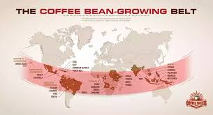 starbucks coffee beans come from. Wonderful Come Starbucks Coffee Buyers Buy Green Beans From Most Of The Countries  In Growing World Throughout Coffee Beans Come From K