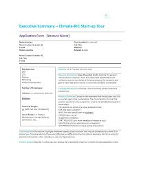 Executive Summary Template Create Professional Resumes Online For ...