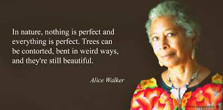 Alice Walker Quotes 13 Awesome Alice Walker Quotes Quotes