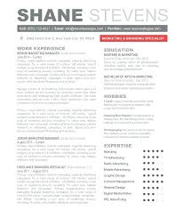Resume Templates For Openoffice Beauteous Resume Templates For Openoffice Resume Templates For Template Cover