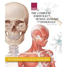 The Complete Portfolio Of Human Anatomy And Pathology