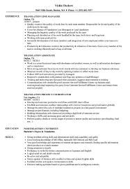 Sample Resume Translator Skills Translation Resume Samples Velvet Jobs