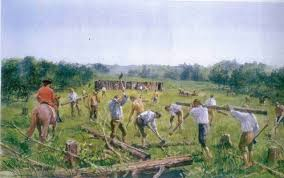 Image result for french & indian war fort necessity