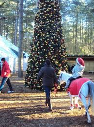 Artificial Trees  Sickles MarketSherwood Forest Christmas Trees