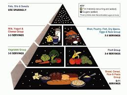 Illustrating Diet Advice Is Hard Heres How Usda Has Tried