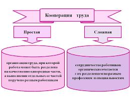 Реферат Разделение и кооперация труда Формы критерии  Формы современной кооперации труда реферат