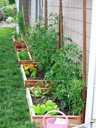 Backyard Raised Garden Designs Raised Vegetables Beds Against A Wall Or Fence With Trellis