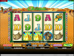 Image result for Crocodopolis Slot