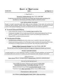 Executive Resume Writing Resume Cv Template Examples