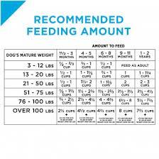Puppy Bottle Feeding Chart Pro Plan Focus Chicken And Rice Formula Puppy Food Purina