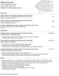 100 stanford resume template caught looking november 2010