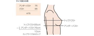 胸 サイズ 計算