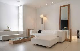 Living Room Mirrors Decoration Big Mirror For Living Room Perfumevillageus