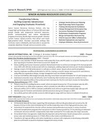 sample hr director resumes the top 4 executive resume examples written by a