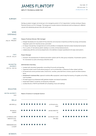 Technical Director Resume Samples Templates Visualcv