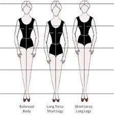 Image result for short legs long torso
