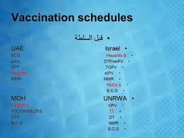 Vaccination Chart In Uae Vaccination In Palestine By Mohammad Baara Ahmed Sawalha
