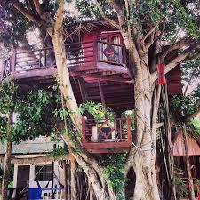 Treehouse On The Beach  MadnessaroundtheworldTreehouse Koh Phangan