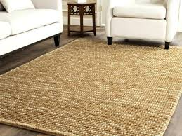 10 x 12 area rug photo 6 of 9 outdoor breeziness where to rugs home depot
