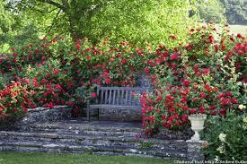 Small Picture A Fragrant Garden Retreat