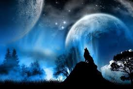 wolf howling at the moon wallpaper hd. Beautiful Wallpaper Wolf Howling At The Red Moon Wallpaper  Coolstyle Wallpapers Throughout Hd Cave